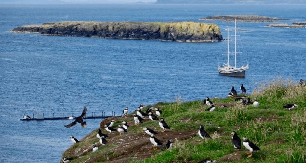 3. Zeilen en eiland hoppen in de Hebriden 2021